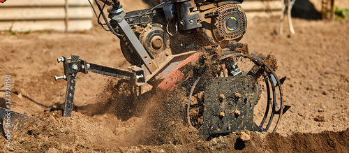 Gardener cultivate ground soil with tiller tractor or rototiller, cutivator Canvas