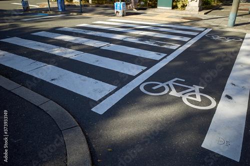 Photo 横断歩道と自転車通行帯の表示
