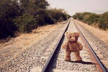 Lone Walked Teddy Bear On Lone...