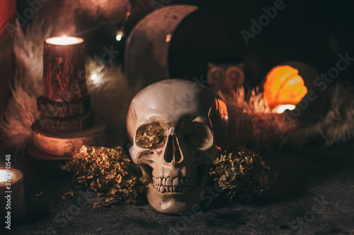 Occult mystic ritual halloween witchcraft scene - human scull, candles, dried fl Wallpaper Mural