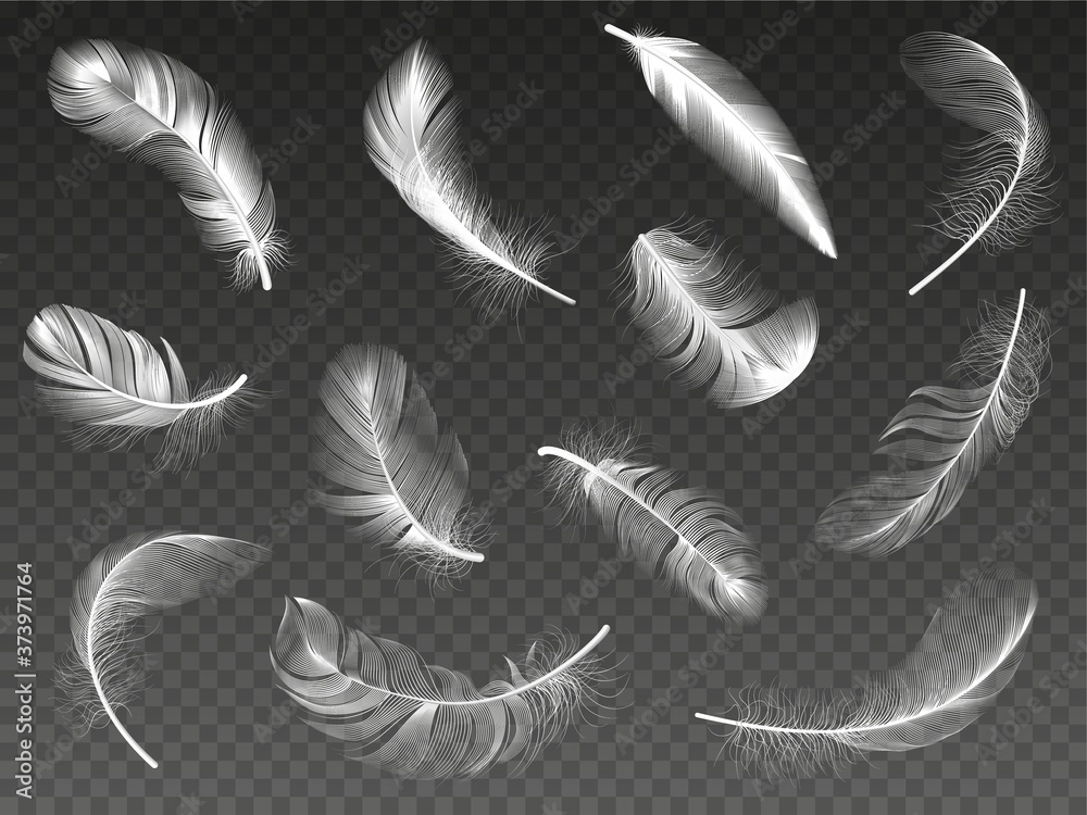 Fototapeta White realistic feather. Fluffy angel twirled feathers, 3d bird feather, swan or dove wings plumage isolated vector illustration icons set. Realistic white swan and fluffy, feather falling
