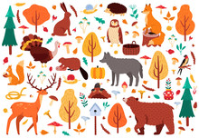 Autumn Cute Animals. Wild Hand Drawn Bear Raccoon Fox And Deer Characters, Woodland Birds And Animals Isolated Vector Illustration Icons Set. Woodland Bird And Bear, Autumn Deer And Forest Fox
