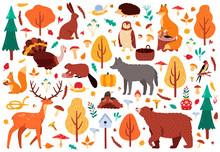 Autumn Cute Animals. Wild Hand...