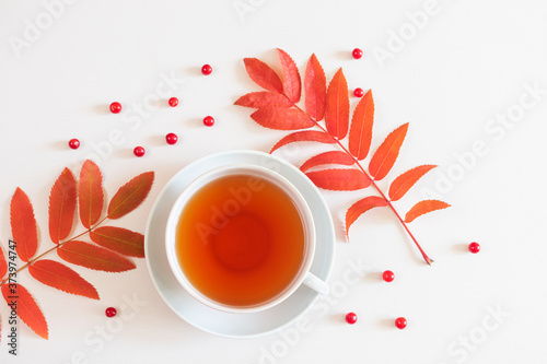 Autumn flat lay: red rowan leaves, red berries, a cup of tea on a pastel neutral background Canvas-taulu