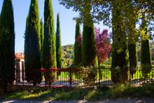 Beautiful Landscape Panorama I...