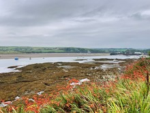 View From The Coast Path To The Parrog, Newport, Pembrokeshire, Wales