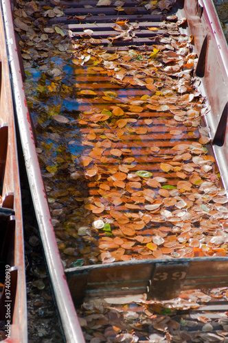 Fototapeta Oxford University punt closeup filled with water and autumn leaves