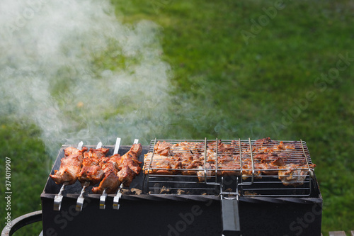 grill barbecue meat on a brazier with smoke, green grass background Canvas Print