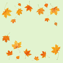 Pattern Made Of Dry Autumn Leaves Swirl. Autumn Frame.