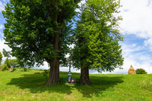 Statue Of A Cross Among Two Large Trees In A Glade. Christian Cross Symbol Among Two Large Trees