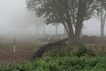 Drei Bagger Bei Nebel