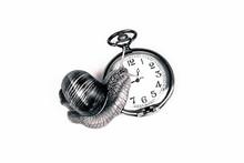 Snail Climbing A Clock