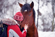 nter photo of a girl and a horse in the winter forest.