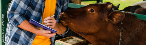 cropped view of farmer in checkered shirt writing on clipboard near brown cow, p Fototapet