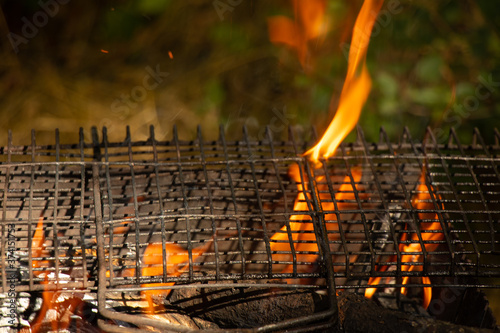 portable grill with firewood in the summer at a picnic in the forest Wallpaper Mural