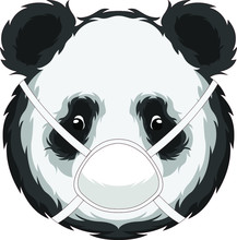 Panda In The Middle Of A Pande...