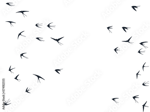 Flying swallow birds silhouettes vector illustration Fototapet