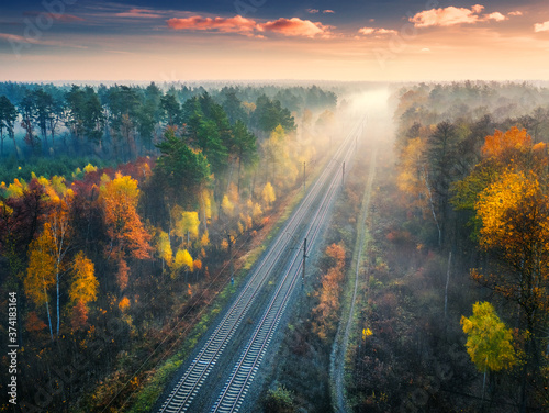 Aerial view of beautiful railroad in autumn forest in foggy sunrise Canvas