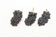 Three Clusters Of Dark Wine Franco-American Hybrid Leon Millot Grapes Isolated On White Background