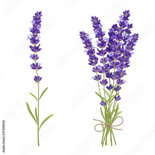 Lavender Cut Flowers Realistic Image Fototapet