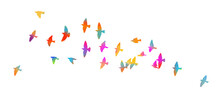 Bird Watercolor. A Flock Of Co...
