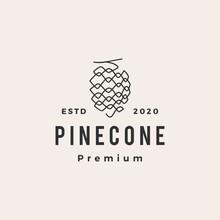 Pine Cone Hipster Vintage Logo Vector Icon Illustration