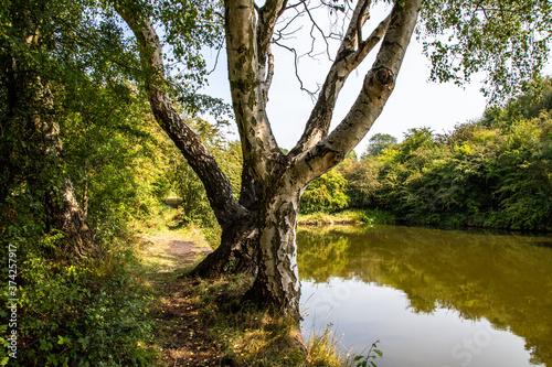 Fotografía midlands canals