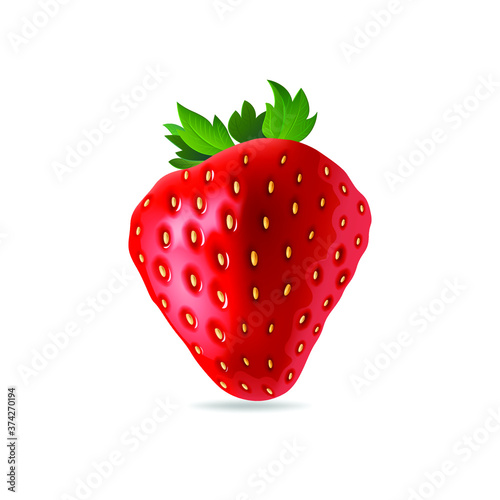 Fototapeta Strawberry vector isolated on white background