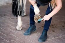 Pferde Pflege