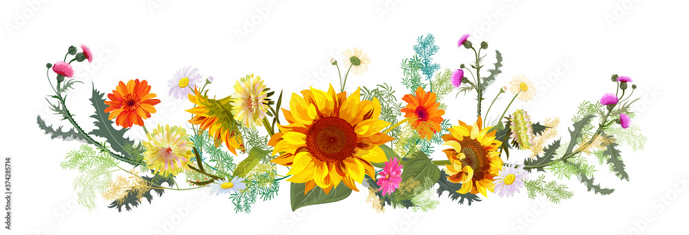 Fototapeta Horizontal autumn's border: sunflowers, yellow asters, thistles, gerbera, daisy flowers, small green twigs on white background. Digital draw, illustration in watercolor style, panoramic view, vector