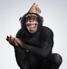 Chimpanzee Smiling And Celebra...