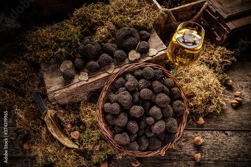 Obraz Mushroom black truffle - fototapety do salonu