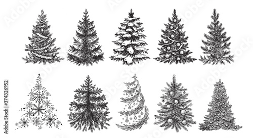 Carta da parati Christmas tree. Hand drawn illustration.
