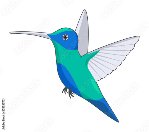 Hummingbird bird on a white background Wallpaper Mural