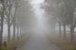 canvas print picture - Weg im Nebel