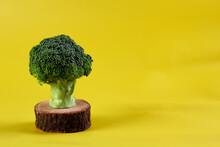 Fresh Green Broccoli Isolated ...