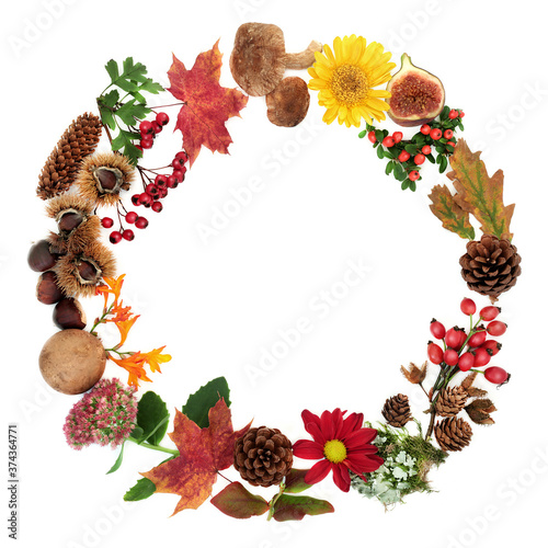 Autumn wreath composition with a variety of natural flora, fauna and food on white background with copy space Wallpaper Mural