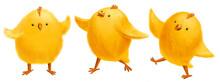 Cute Cartoon Yellow Chicks For...