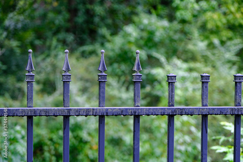 Photo A Wet Bladk Wrought Iron Fence After a Rain