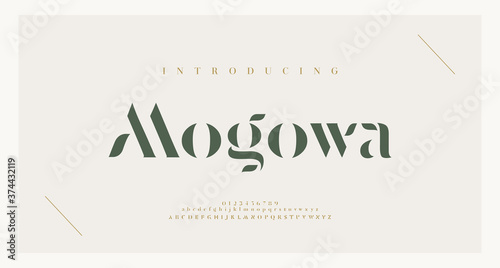 Canvas Elegant alphabet letters font and number