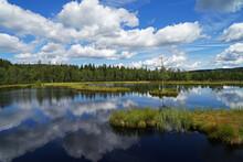 Beautiful Mirroring Peat Bog L...