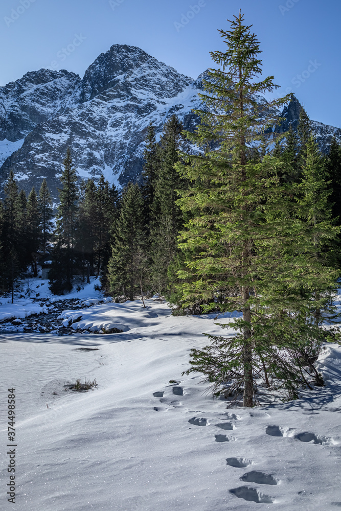 Tatra mountain, view from fish eye pond in winter