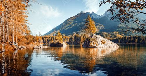 Amazing sunny landscape Canvas Print