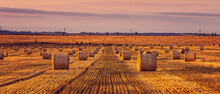 Bales Of Wheat Under The Color...