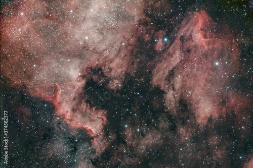 Photographie DeepSky Cygnus Wall Muro nel Cigno