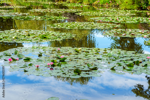 Monet's Pond at Giverny with water lilies and clouds reflection in summer - Give Canvas Print
