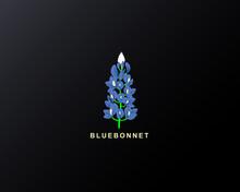 Bluebonnet Vector
