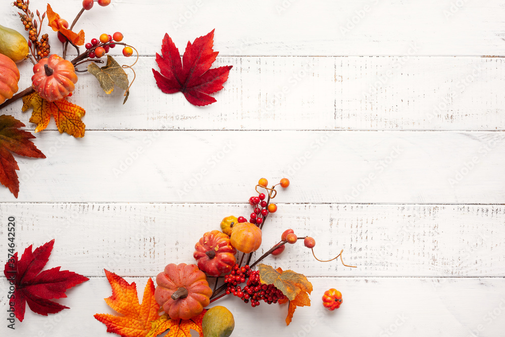 Fototapeta Festive autumn decor from pumpkins, berries and leaves on a white  wooden background. Concept of Thanksgiving day or Halloween. Flat lay autumn composition with copy space.