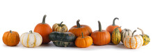 Many Pumpkins Isolated On White