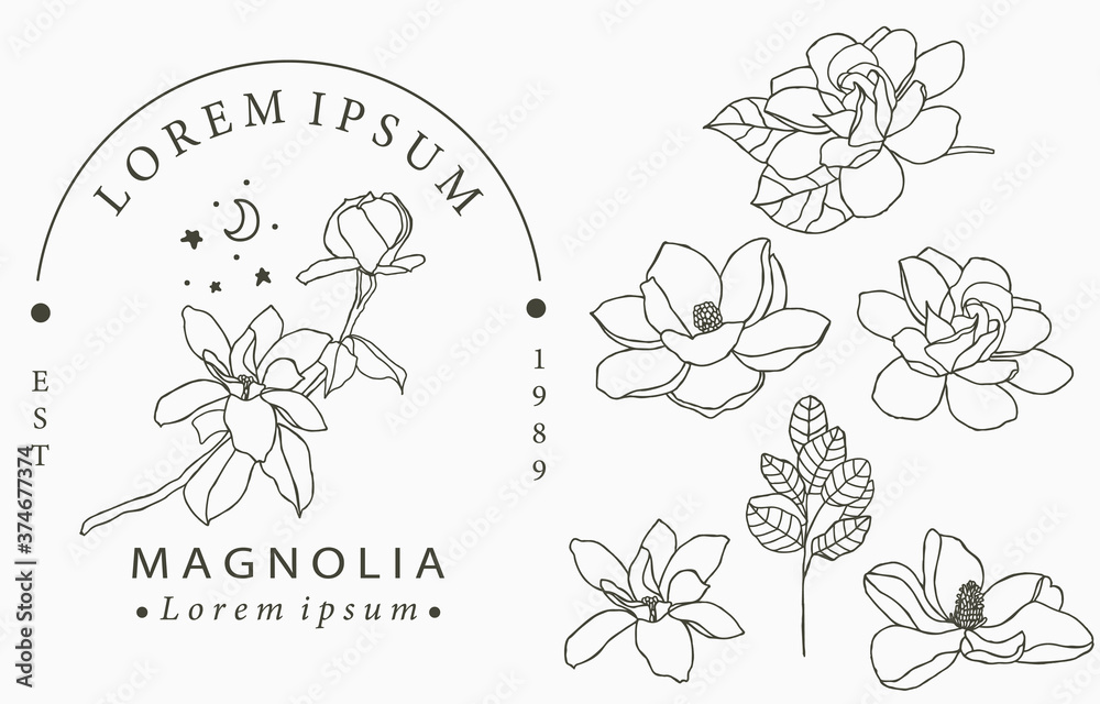 Fototapeta Beauty occult logo collection with geometric,magnolia,moon,star,flower.Vector illustration for icon,logo,sticker,printable and tattoo